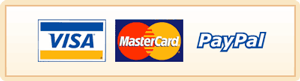 PayPal Visa Mastercard and Direct Deposit Accepted